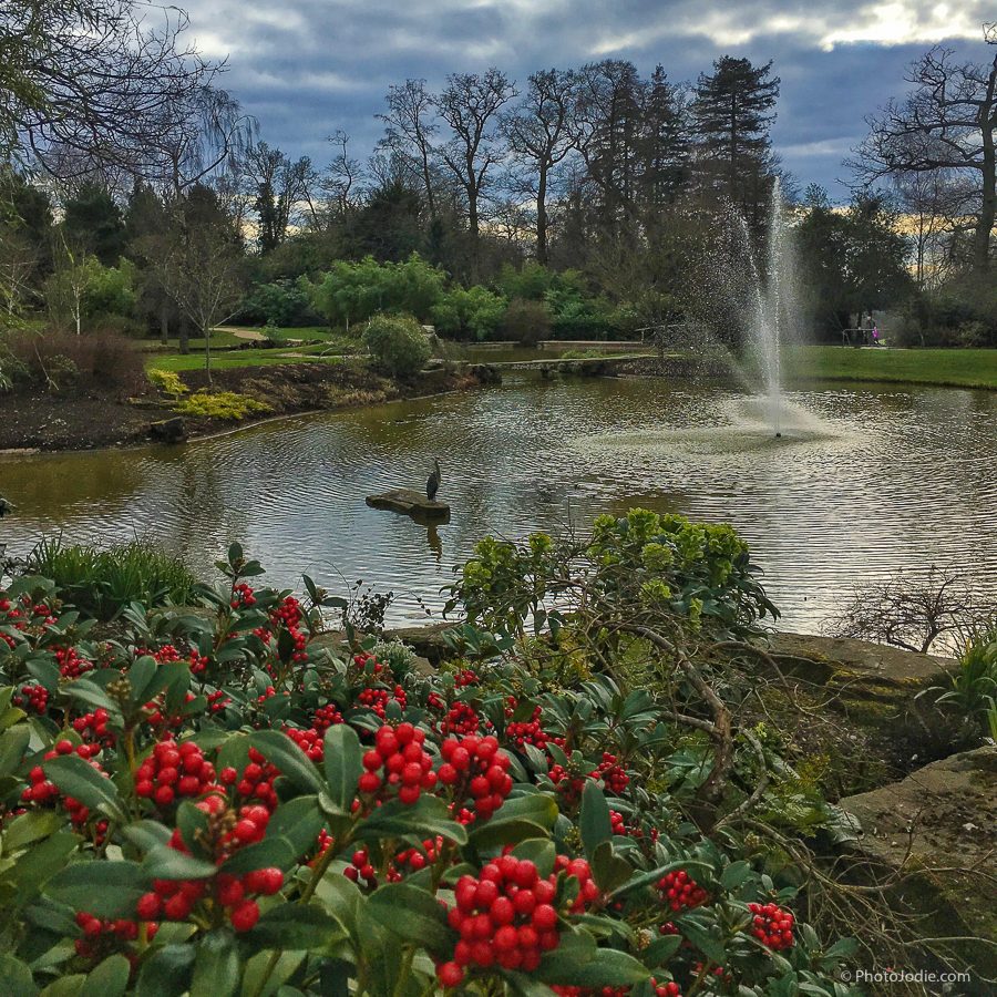 Cliveden Gardens in Winter