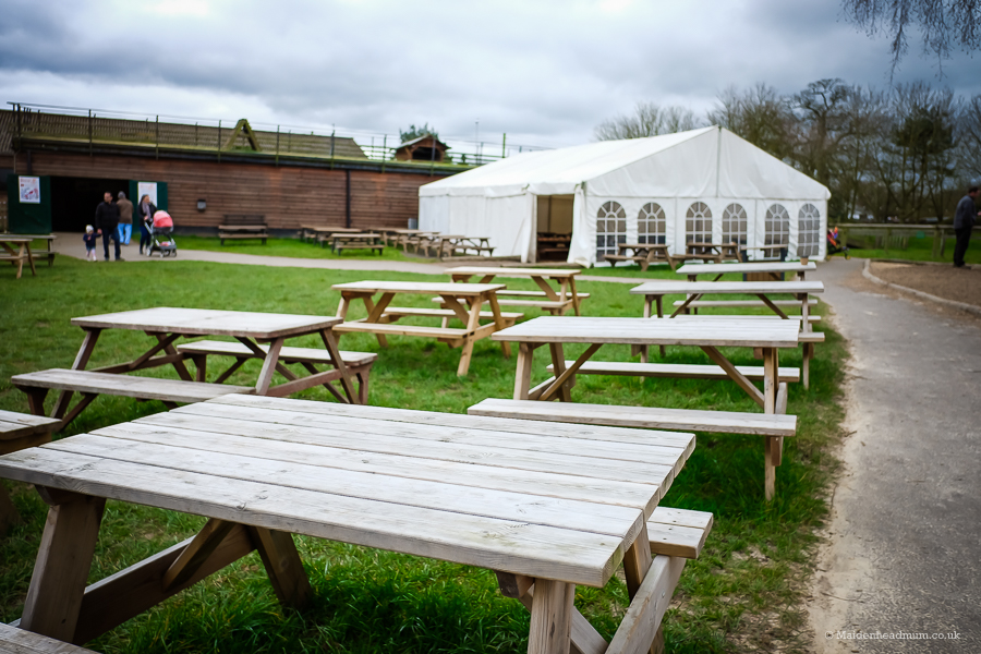 Picnic benches at Odds Farm