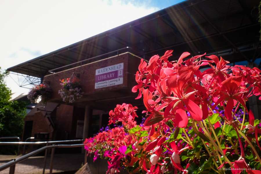 Beautiful flowers in the sunshine outside Maidenhead library