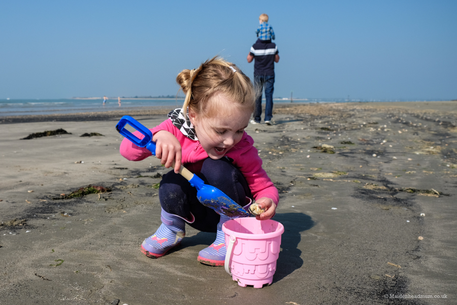 Collecting shells on West Wittering beach.