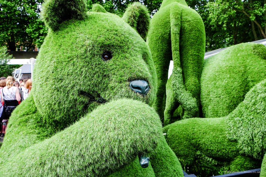 Bear made out of grass at The Chelsea Flower Show