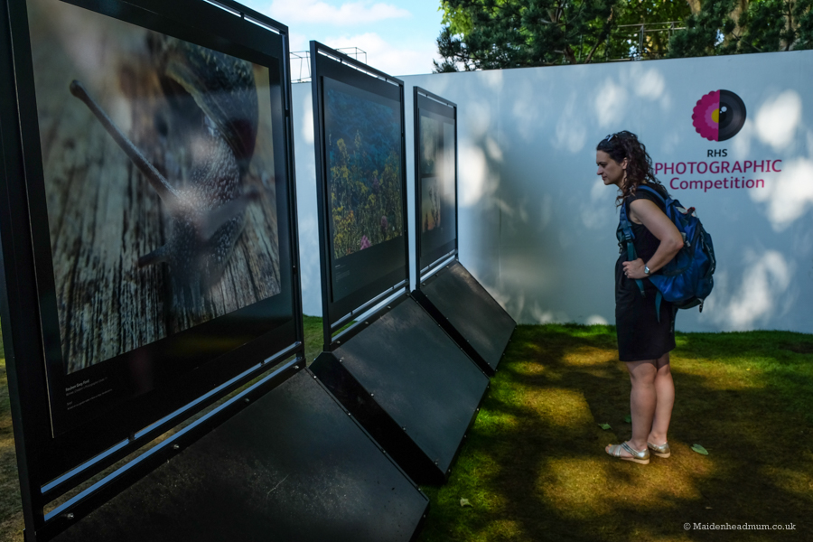 RHS Photography Competion at The Chelsea Flower Show