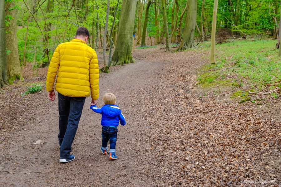 walking in Bisham woods: children's activities in Maidenhead