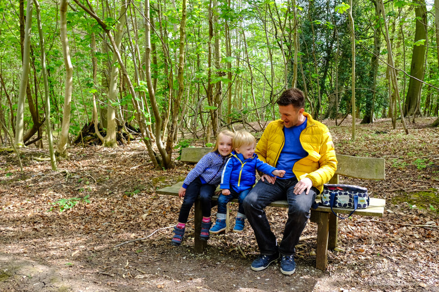 Picnic in the woods: chidrens activities Maidenhead