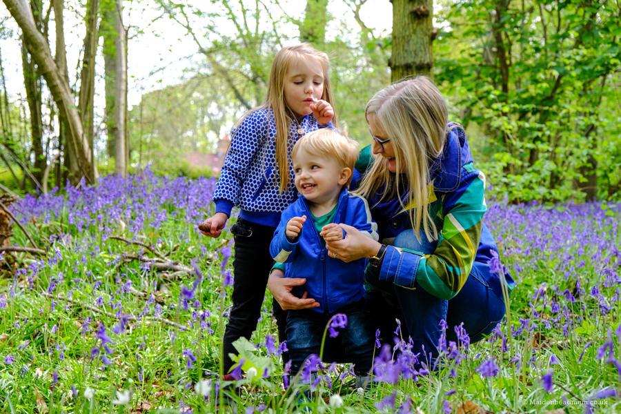 Children playing in bluebells in Bisham wood in Maidenhead