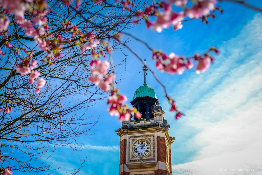 Maidenhead clock tower in spring