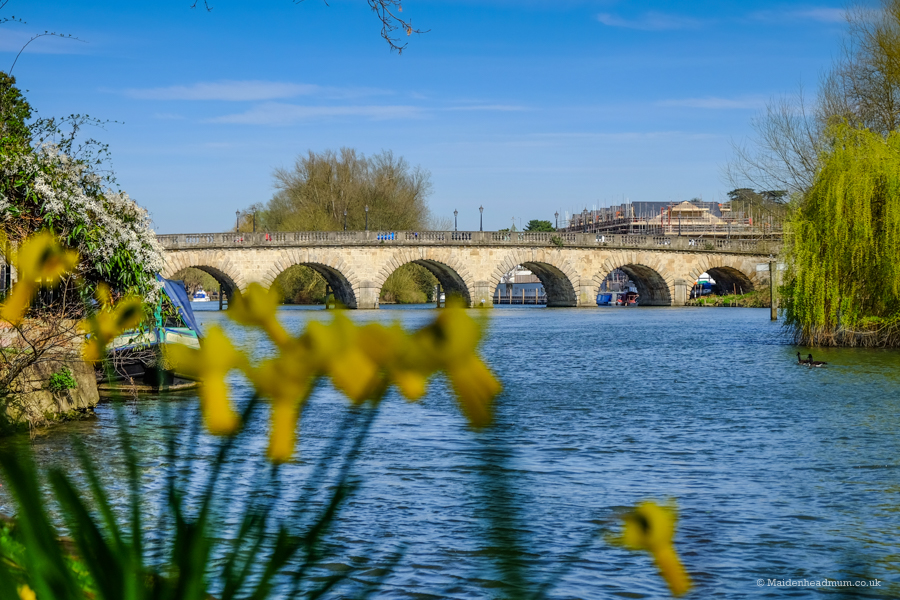 Maidenhead Bridge in Spring