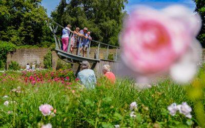 Summer colours at Savill Gardens
