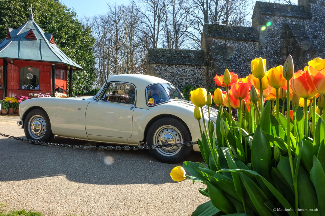 The tulip festival at Arundel castle with an MG classic car