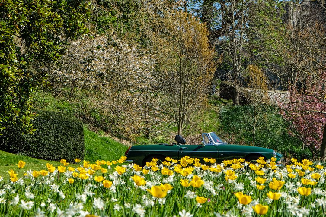 an MG car in the grounds of Arundel Castel