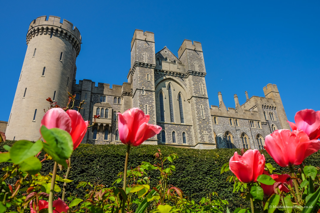 Arundel Castle during the tulip festival