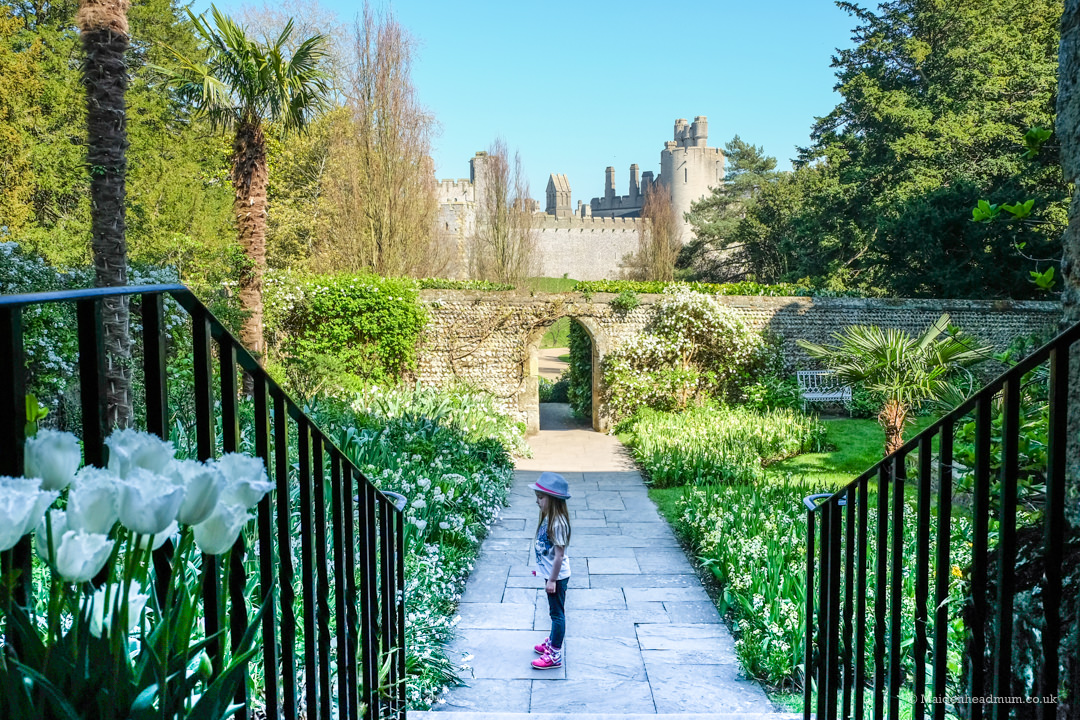 The White Garden at Arundel castle